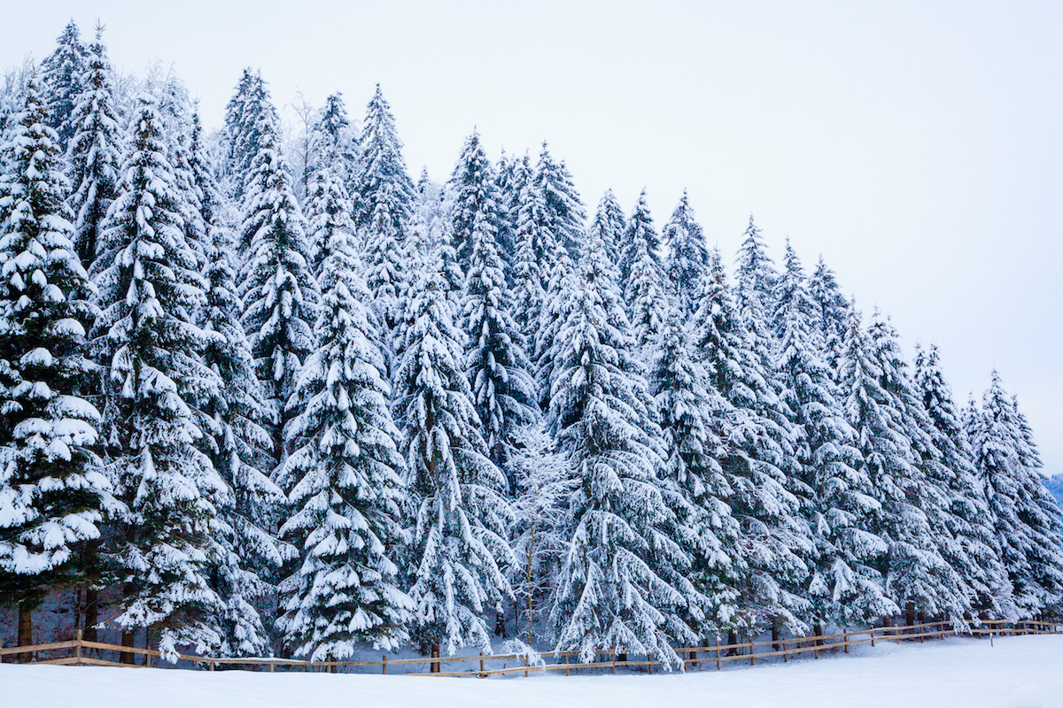 4 Ways to Help Beat Cabin Fever This Winter Season_Origin Active Lifestyle Communities