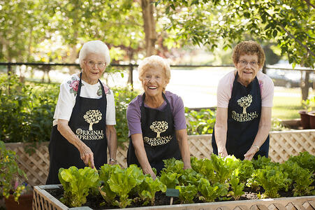 5 Spring Cleaning Tips for Active Seniors